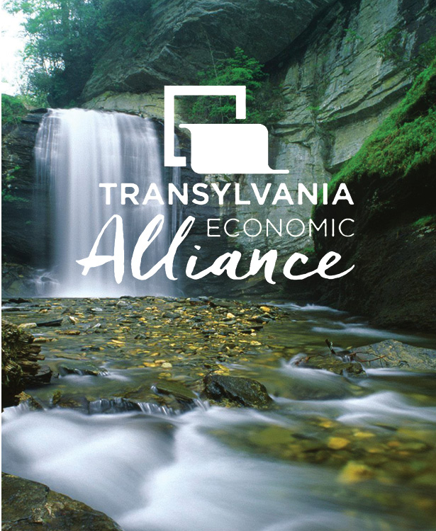 Platt Press Transylvania Economic Alliance cover image