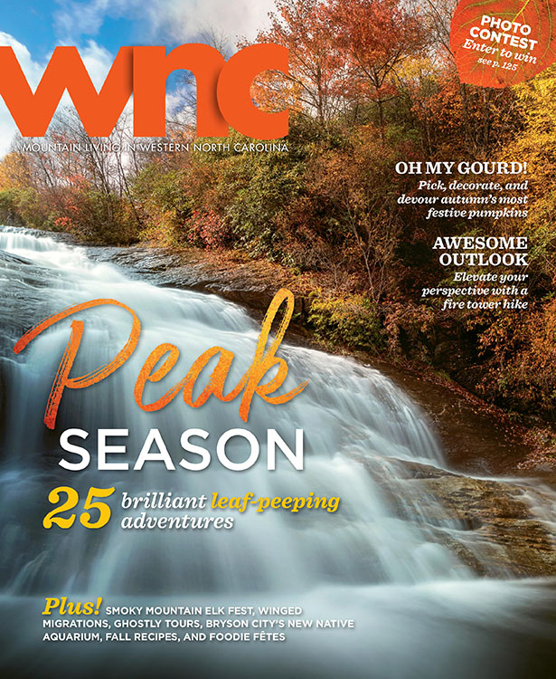 Platt Press WNC cover image 2